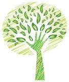 与叶子-作为树干的一臂之力的树 免版税库存照片