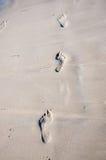 在湿沙子的脚印刷品。 图库摄影