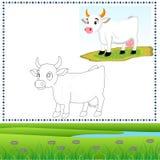 着色母牛 免版税库存图片
