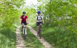 骑自行车在森林里的女孩 库存照片