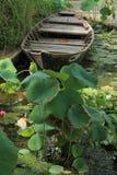 小船和莲花 库存照片