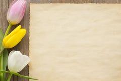 在木头的郁金香花 库存照片