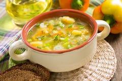 蔬菜汤 免版税库存照片