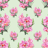 Картина нарисованной вручную орхидеи безшовная Стоковая Фотография