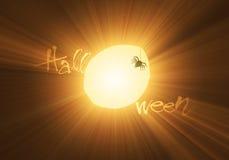 火光万圣节轻的月亮蜘蛛 库存图片