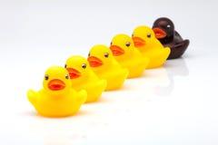 橡胶鸭子 图库摄影