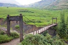 一座老木脚桥梁 库存照片