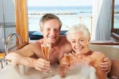 放松在巴恩的资深夫妇一起喝香宾 库存图片