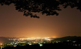 从森林看见的夜城市 免版税库存图片