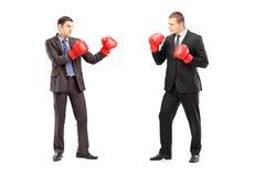 有两个的商人与拳击手套的一次战斗 库存照片