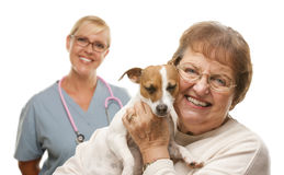 有狗和兽医的愉快的资深妇女 库存图片