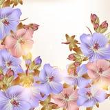 Όμορφο διανυσματικό υπόβαθρο με τα λουλούδια Στοκ Φωτογραφία