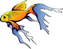 金黄鱼 库存图片
