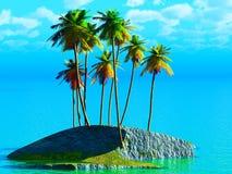 椰子树丛 免版税库存图片