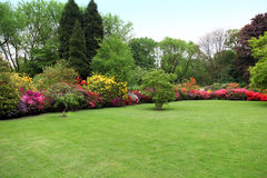 美丽的被修剪的草坪在夏天庭院里 免版税库存图片