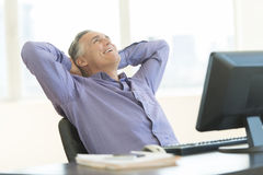 愉快的商人用在查寻在办公室的头后的手 库存照片