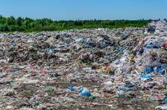 垃圾堆在森林里 免版税库存照片