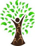 Человеческое дерево Стоковые Изображения