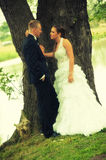 在树的婚礼夫妇 库存图片