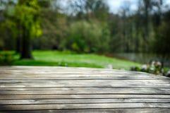 空的木桌在春天庭院里 免版税库存照片