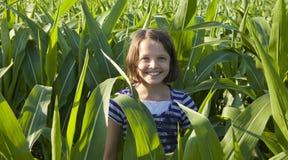 站立在玉米的小女孩 免版税库存照片