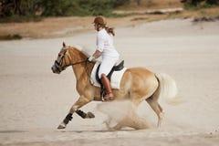 在沙丘的马骑术 免版税库存照片