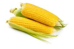 新鲜的甜玉米 免版税库存照片