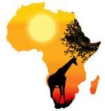 Αφρική/σκιαγραφία σαφάρι Στοκ Φωτογραφία