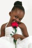 有红色玫瑰的美丽的小女孩 库存图片