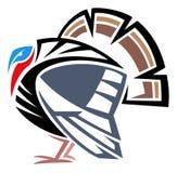 Одичалая Турция Стоковые Фотографии RF