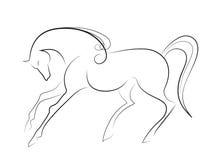 典雅的马 免版税库存照片