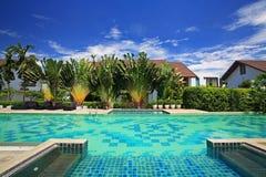 豪华蓝色游泳池在热带庭院里 免版税库存图片