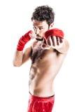 拳击手的拳头 库存图片