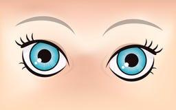 逗人喜爱的眼睛例证 库存图片