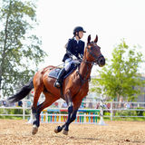 一匹红色马的女运动员。 库存图片