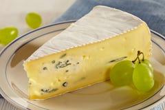 咸味干乳酪乳酪 免版税图库摄影