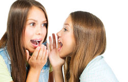 闲话。两个十几岁的女孩 库存照片