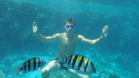 年轻人潜水在有鱼和礁石的海 免版税库存图片