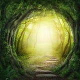 Дорога в темном лесе Стоковые Фотографии RF