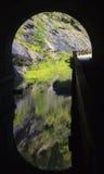 Тоннель лапки лапки Стоковые Изображения RF