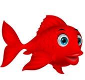逗人喜爱的红色鱼动画片 免版税库存照片