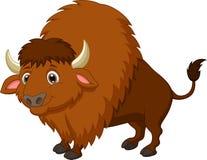 北美野牛动画片 图库摄影