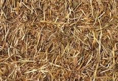 Предпосылка сена Стоковые Изображения