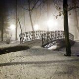公园桥梁在冬天 免版税库存图片