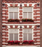 Παράθυρα με τα λουλούδια Στοκ φωτογραφίες με δικαίωμα ελεύθερης χρήσης