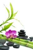 与竹和黑石头-白色背景的紫色兰花 免版税图库摄影