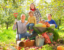 Ευτυχής οικογένεια με τη συγκομιδή Στοκ εικόνες με δικαίωμα ελεύθερης χρήσης