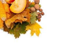 秋天水果和蔬菜在老化叶子 库存照片