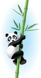 熊猫例证 库存图片