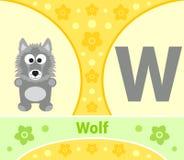英语字母表狼 库存照片